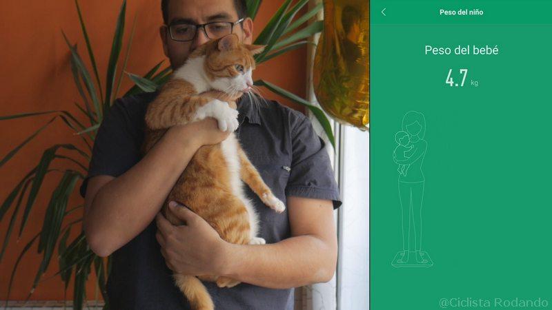pesar al gato con el movil y una balanza